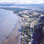 Mapua