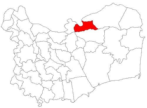 Pardina Romania (RO)
