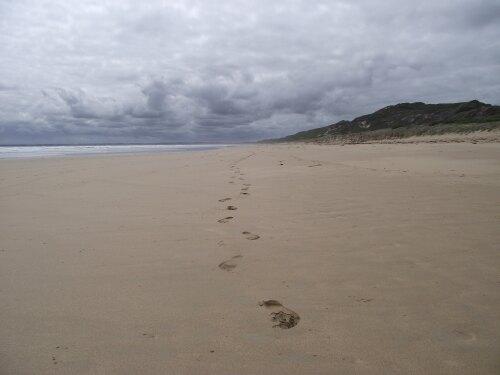 Venus Bay Australia (AU)