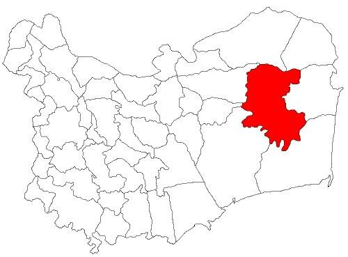 Crișan Romania (RO)