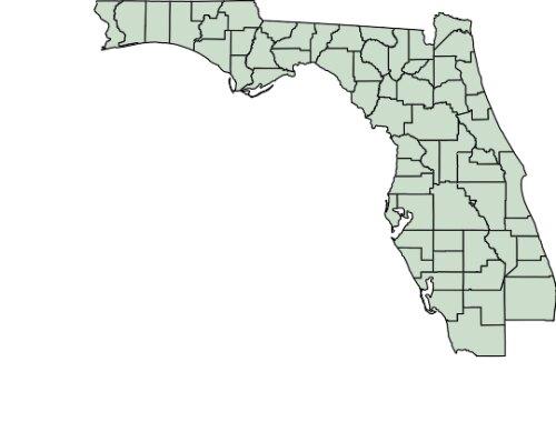 Gulf Stream United States (US)