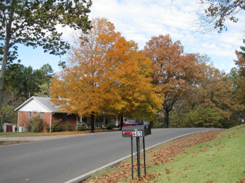 Batesville United States (US)