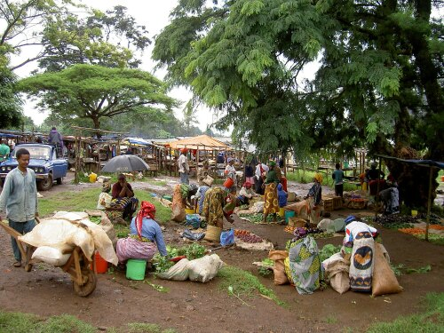 Marangu Tanzania (TZ)
