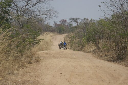 Petauke Zambia (ZM)