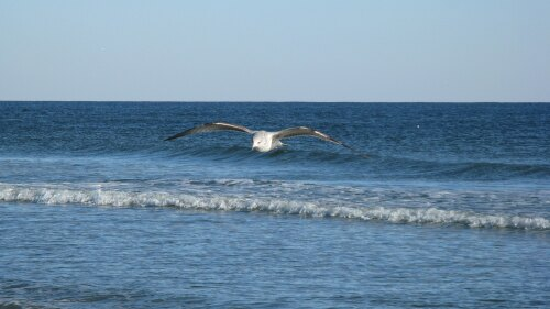 Sunset Beach United States (US)
