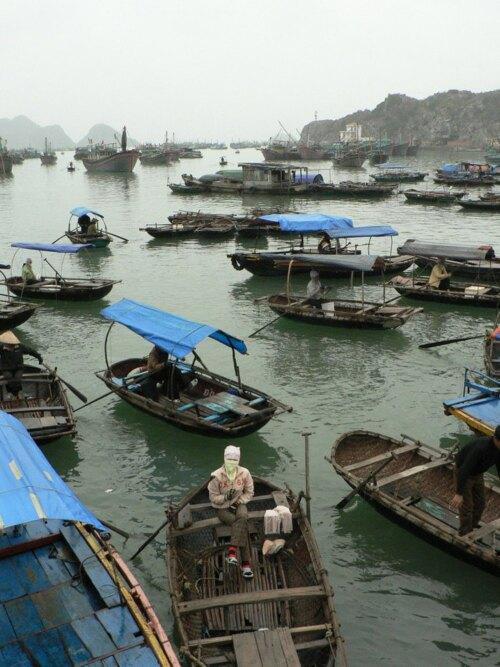 Hạ Long Vietnam (VN)