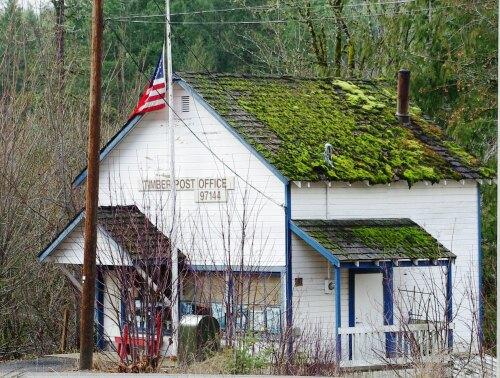 Timber United States (US)