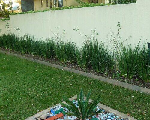 Houghton Estate South Africa (ZA)