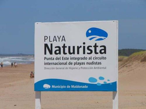 Chihuahua Uruguay (UY)