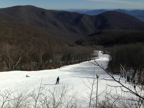 Wintergreen United States (US)
