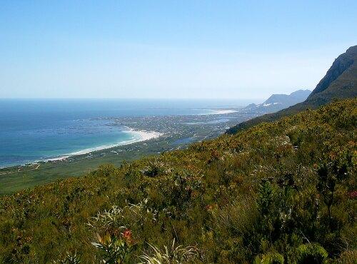 Betty's Bay South Africa (ZA)