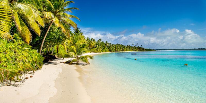 trip to beach|beaches travel planner app