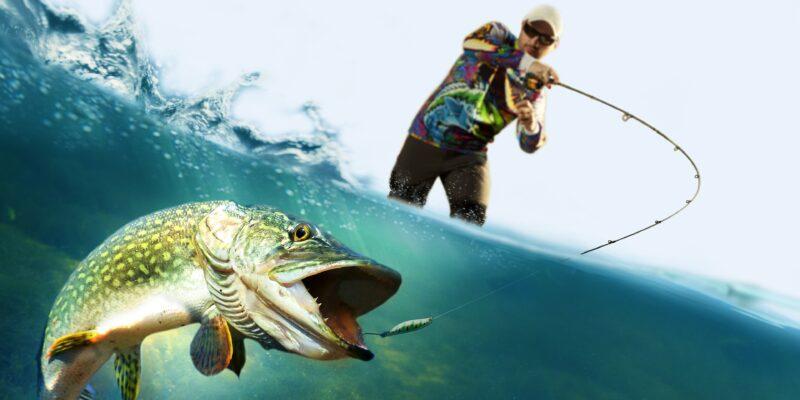 trip to fish|fishing travel planner app