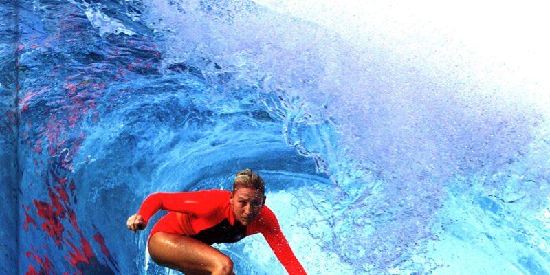 trip to surf|surfing travel planner app