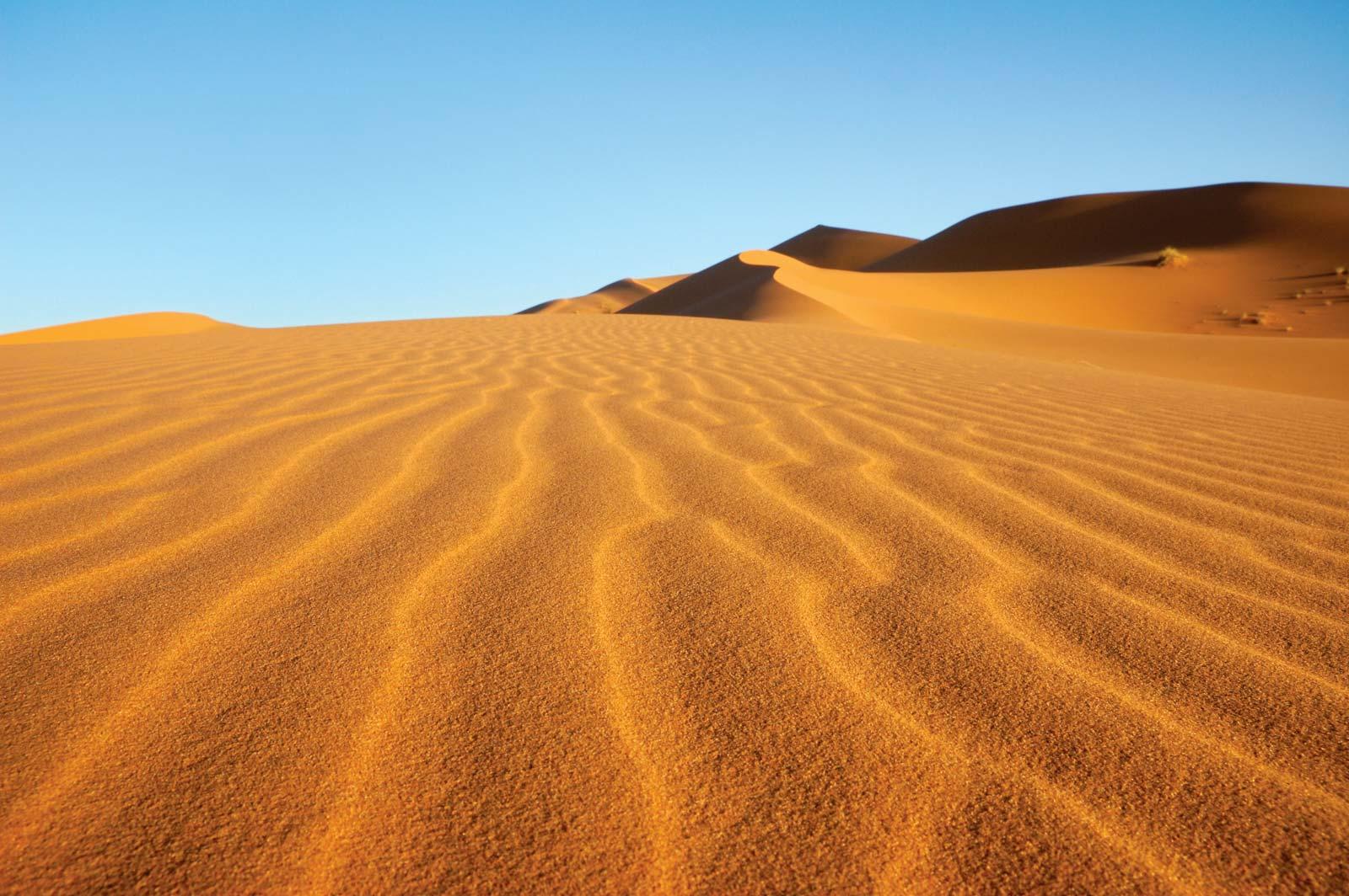 trip to desert|deserts travel planner app