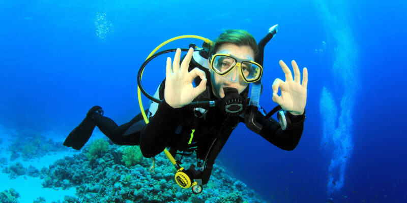 trip to dive|diving travel planner app